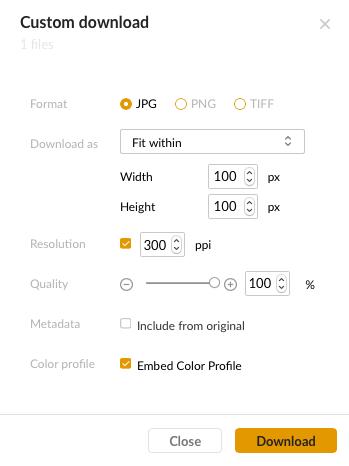 The Custom Download dialog