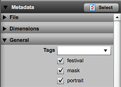 Metadata field values displayed as check boxes
