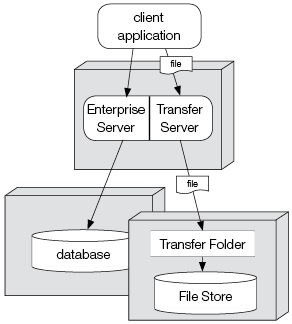 Enterprise Server split setup