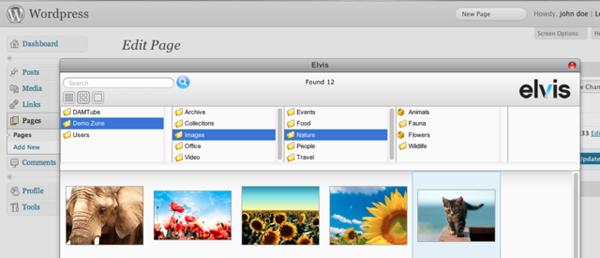 The Wordpress integration