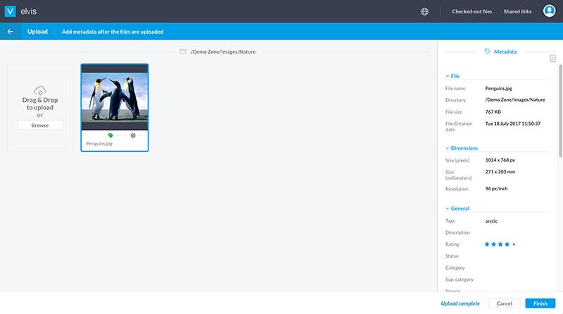 elvis-6.1-pro-client-asset-upload.png